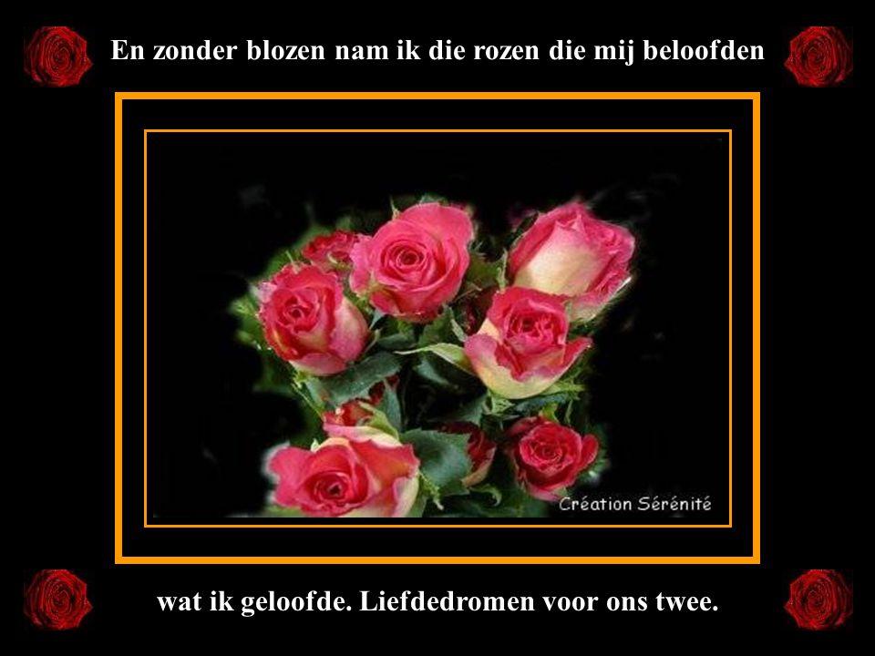 En zonder blozen nam ik die rozen die mij beloofden wat ik geloofde. Liefdedromen voor ons twee.