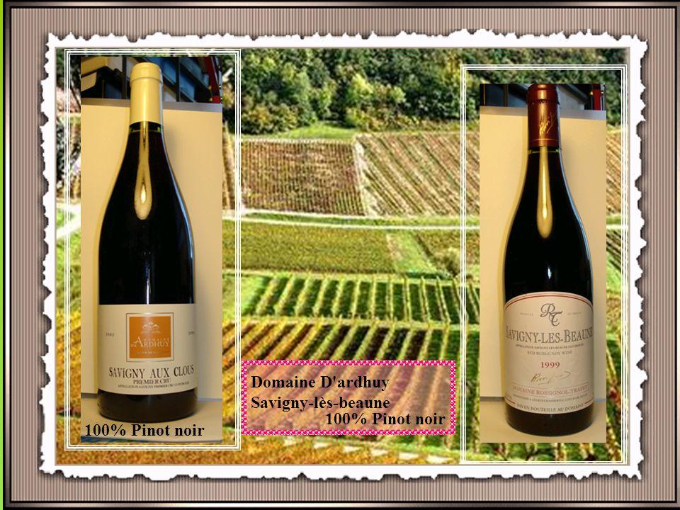 Wijngaard in Meursault De ligging De Bourgogne ligt in het oostelijke gedeelte van Frankrijk. Als men spreekt over dit wijngebied wordt meestal bedoel