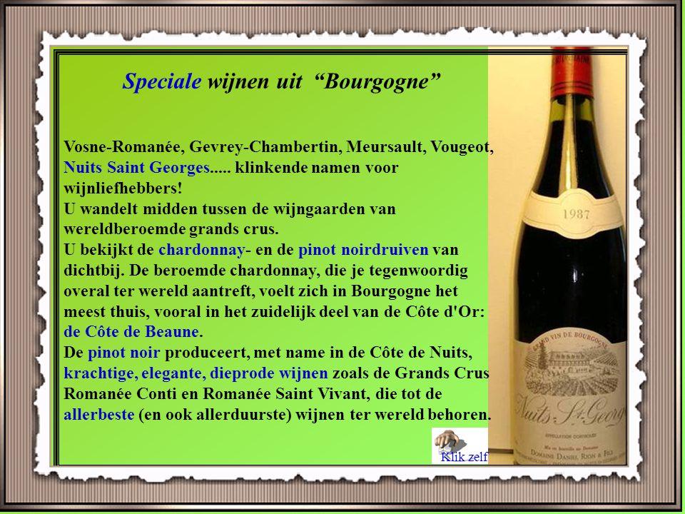 Côte Chalonnaise is een subregio van de Bourgogne regio in Frankrijk. Côte Chalonnaise ligt in het zuiden van de Côte d'Or. Het is nog steeds het bela