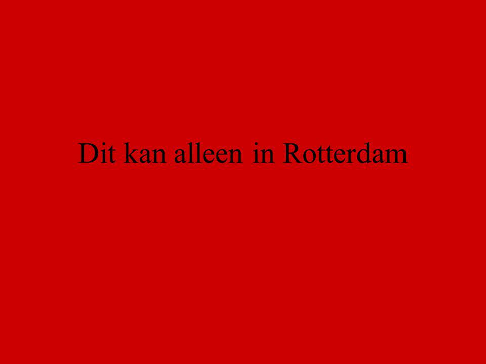 Dit kan alleen in Rotterdam