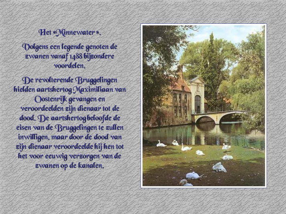 Het «Minnewater ». Volgens een legende genoten de zwanen vanaf 1488 bijzondere voordelen. De revolterende Bruggelingen hielden aartshertog Maximiliaan