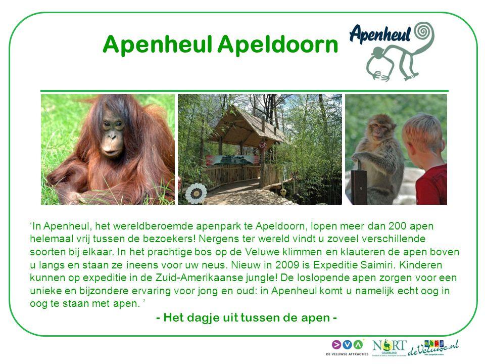 Apenheul Apeldoorn 'In Apenheul, het wereldberoemde apenpark te Apeldoorn, lopen meer dan 200 apen helemaal vrij tussen de bezoekers! Nergens ter were