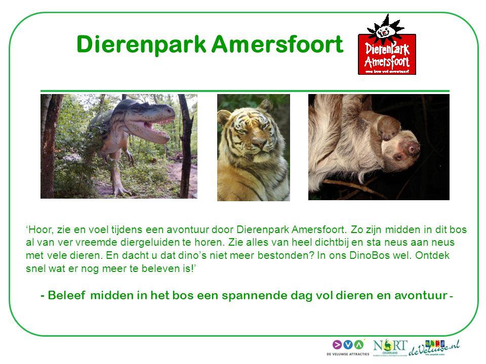 Dierenpark Amersfoort 'Hoor, zie en voel tijdens een avontuur door Dierenpark Amersfoort. Zo zijn midden in dit bos al van ver vreemde diergeluiden te