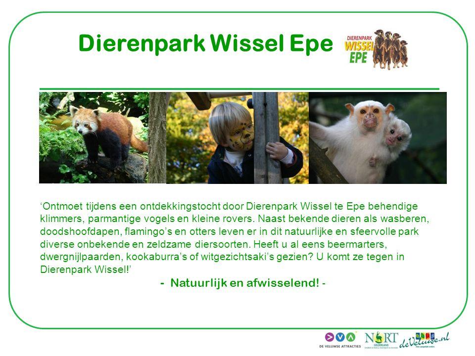 Dolfinarium Harderwijk 'Kom zien, beleven, spelen & ontdekken.