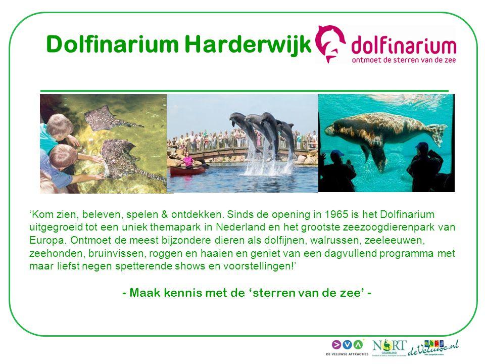 Dolfinarium Harderwijk 'Kom zien, beleven, spelen & ontdekken. Sinds de opening in 1965 is het Dolfinarium uitgegroeid tot een uniek themapark in Nede