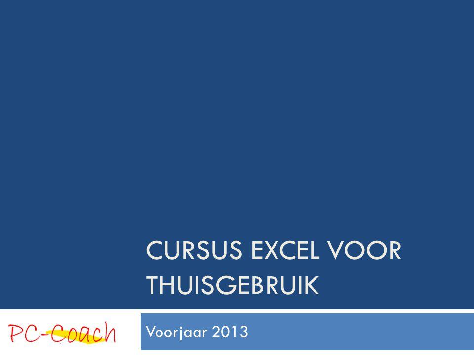 CURSUS EXCEL VOOR THUISGEBRUIK Voorjaar 2013