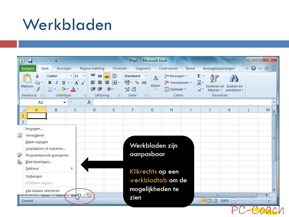 Werkbladen Werkbladen zijn aanpasbaar Klikrechts op een werkbladtab om de mogelijkheden te zien
