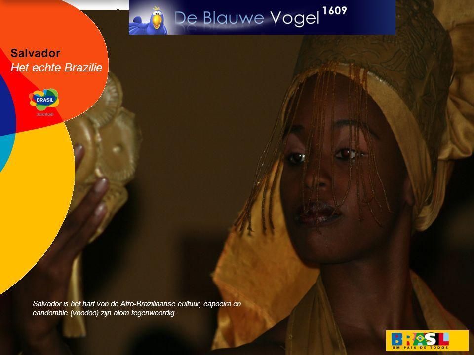 Salvador Het echte Brazilie Salvador is het hart van de Afro-Braziliaanse cultuur, capoeira en candomble (voodoo) zijn alom tegenwoordig.