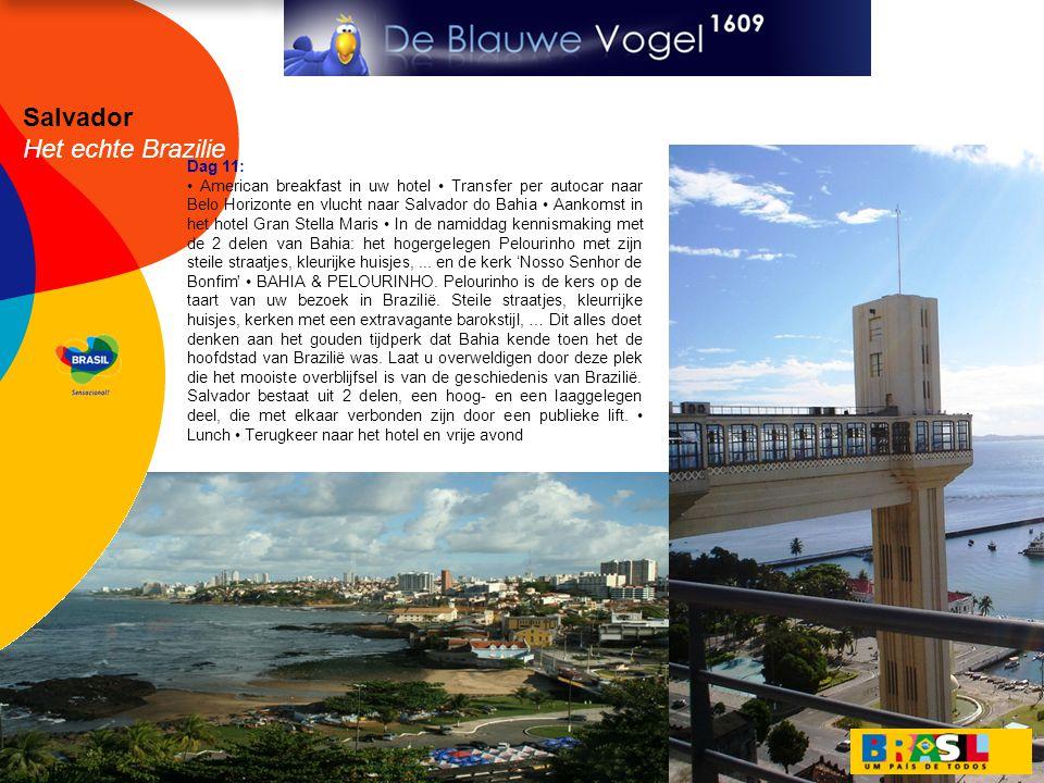 Salvador Het echte Brazilie Dag 11: • American breakfast in uw hotel • Transfer per autocar naar Belo Horizonte en vlucht naar Salvador do Bahia • Aankomst in het hotel Gran Stella Maris • In de namiddag kennismaking met de 2 delen van Bahia: het hogergelegen Pelourinho met zijn steile straatjes, kleurijke huisjes,...