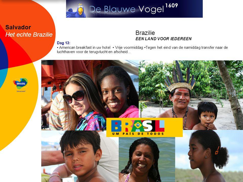 Salvador Het echte Brazilie Dag 13: • American breakfast in uw hotel • Vrije voormiddag •Tegen het eind van de namiddag transfer naar de luchthaven voor de terugvlucht en afscheid...