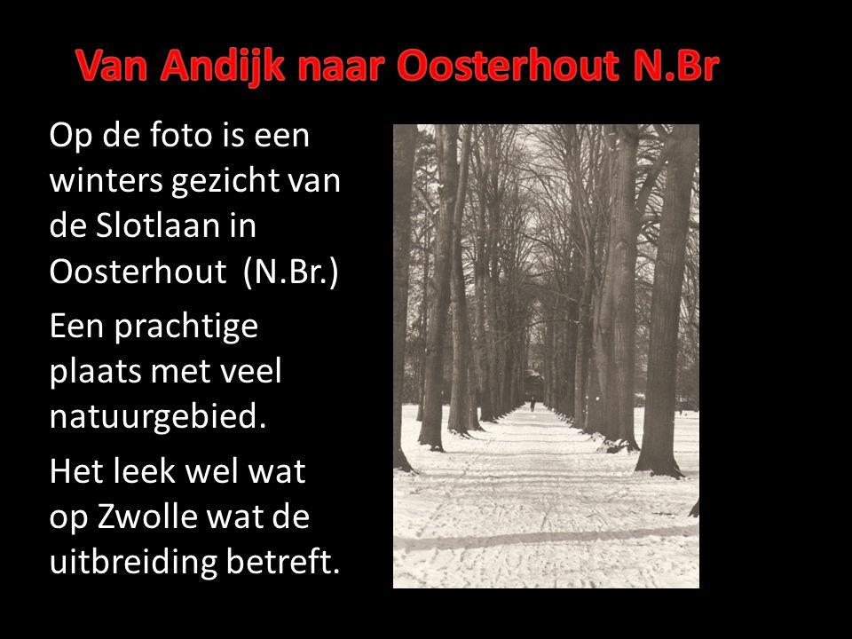 Op de foto is een winters gezicht van de Slotlaan in Oosterhout (N.Br.) Een prachtige plaats met veel natuurgebied. Het leek wel wat op Zwolle wat de