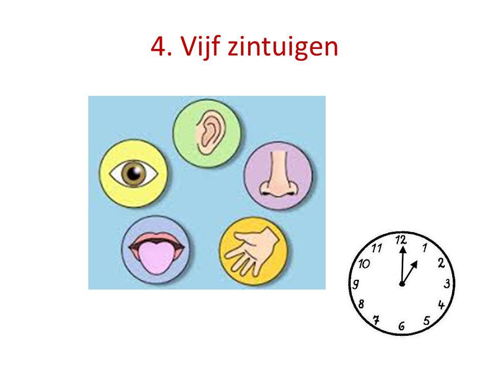 4. Vijf zintuigen