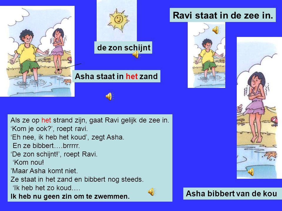 Vandaag gaan Asha, Ravi en mama een dagje weg. 'Leg de bal maar in de auto', zegt mama tegen Ravi. 'We gaan een dagje naar het strand!' 'Leuk', roepen