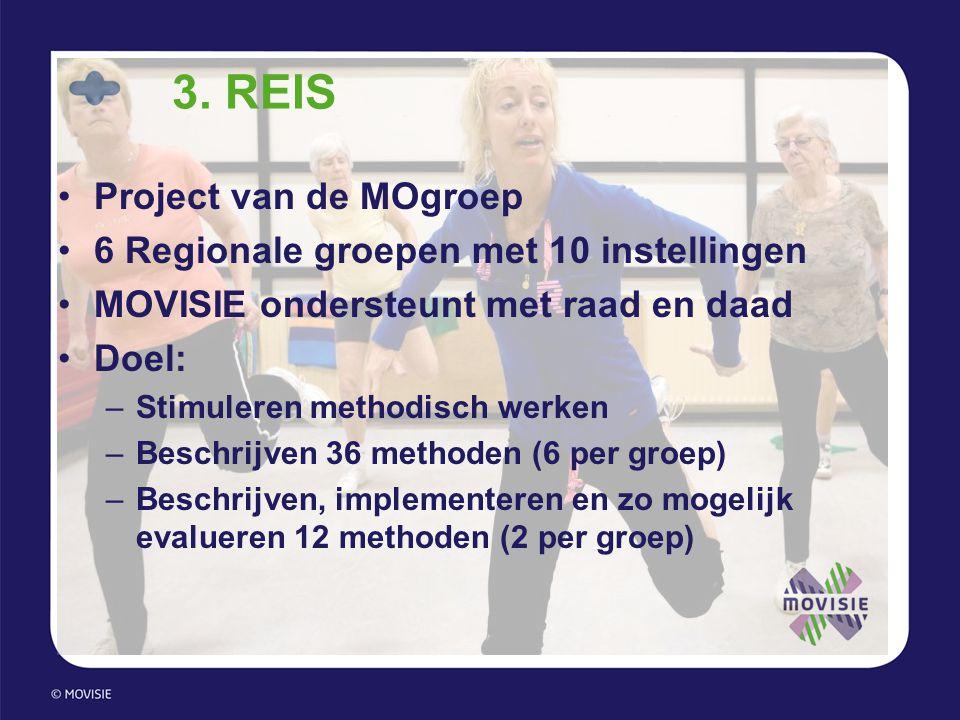 3. REIS •Project van de MOgroep •6 Regionale groepen met 10 instellingen •MOVISIE ondersteunt met raad en daad •Doel: –Stimuleren methodisch werken –B