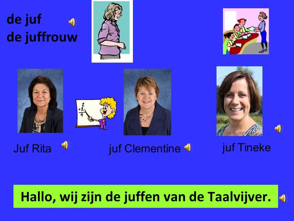 Mondeling Nederlands Cursus 1 – de school