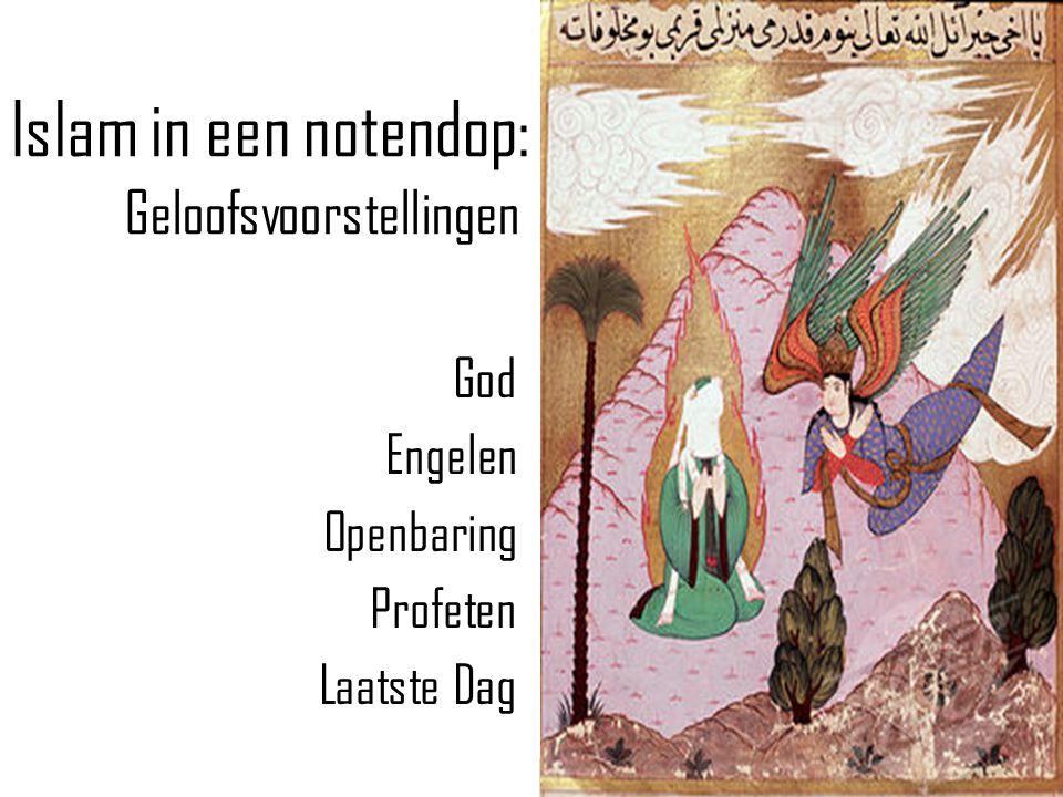 Islam in een notendop: Geloofsuitingen Shahada Salaat Zakaat Hajj Sawm