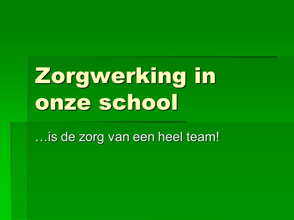 Zorgwerking in onze school …is de zorg van een heel team!