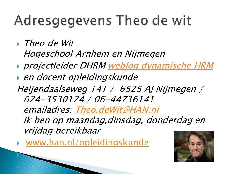  Theo de Wit Hogeschool Arnhem en Nijmegen  projectleider DHRM weblog dynamische HRMweblog dynamische HRM  en docent opleidingskunde Heijendaalsewe