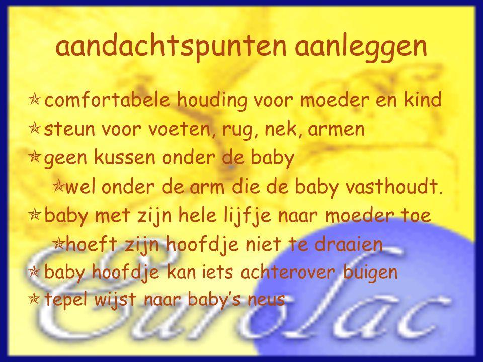 aandachtspunten aanleggen  comfortabele houding voor moeder en kind  steun voor voeten, rug, nek, armen  geen kussen onder de baby  wel onder de a