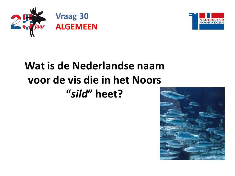 Vraag 30 Wat is de Nederlandse naam voor de vis die in het Noors sild heet? ALGEMEEN