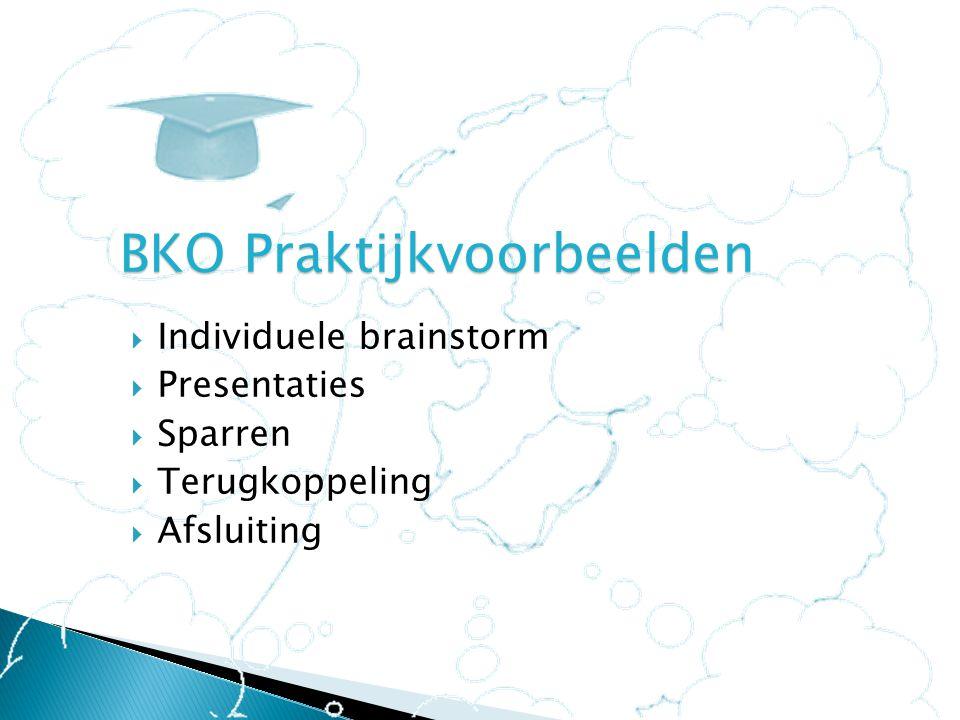  Individuele brainstorm  Presentaties  Sparren  Terugkoppeling  Afsluiting BKO Praktijkvoorbeelden