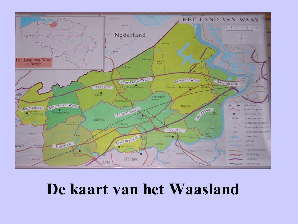 •Er zijn 2 steden en 9 gemeenten in het Waasland.Waasland komt van het woord 'Wasa' = modderland.