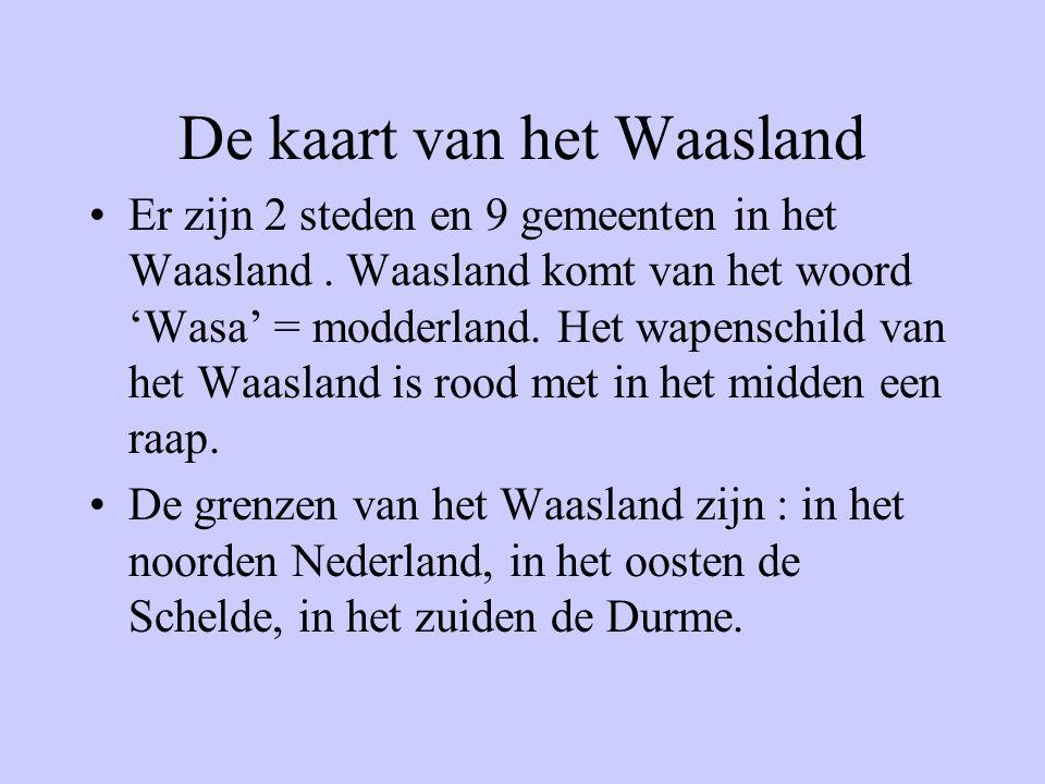 •Er zijn 2 steden en 9 gemeenten in het Waasland. Waasland komt van het woord 'Wasa' = modderland. Het wapenschild van het Waasland is rood met in het