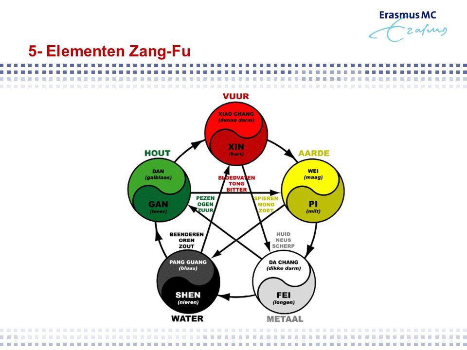 5- Elementen Zang-Fu