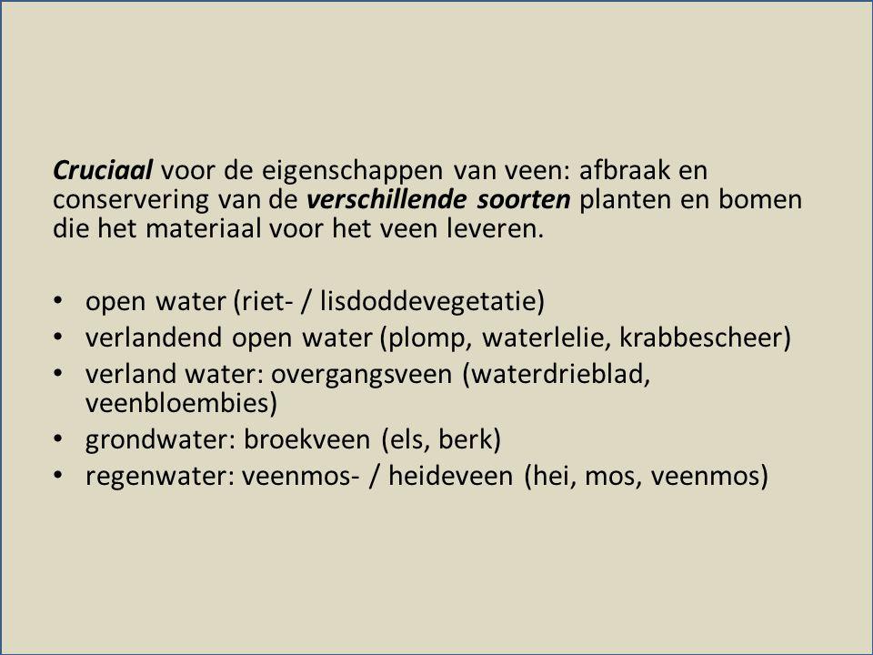 Cruciaal voor de eigenschappen van veen: afbraak en conservering van de verschillende soorten planten en bomen die het materiaal voor het veen leveren.