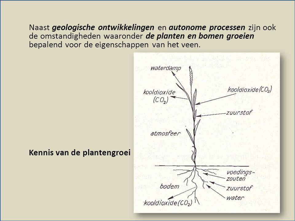 Naast geologische ontwikkelingen en autonome processen zijn ook de omstandigheden waaronder de planten en bomen groeien bepalend voor de eigenschappen