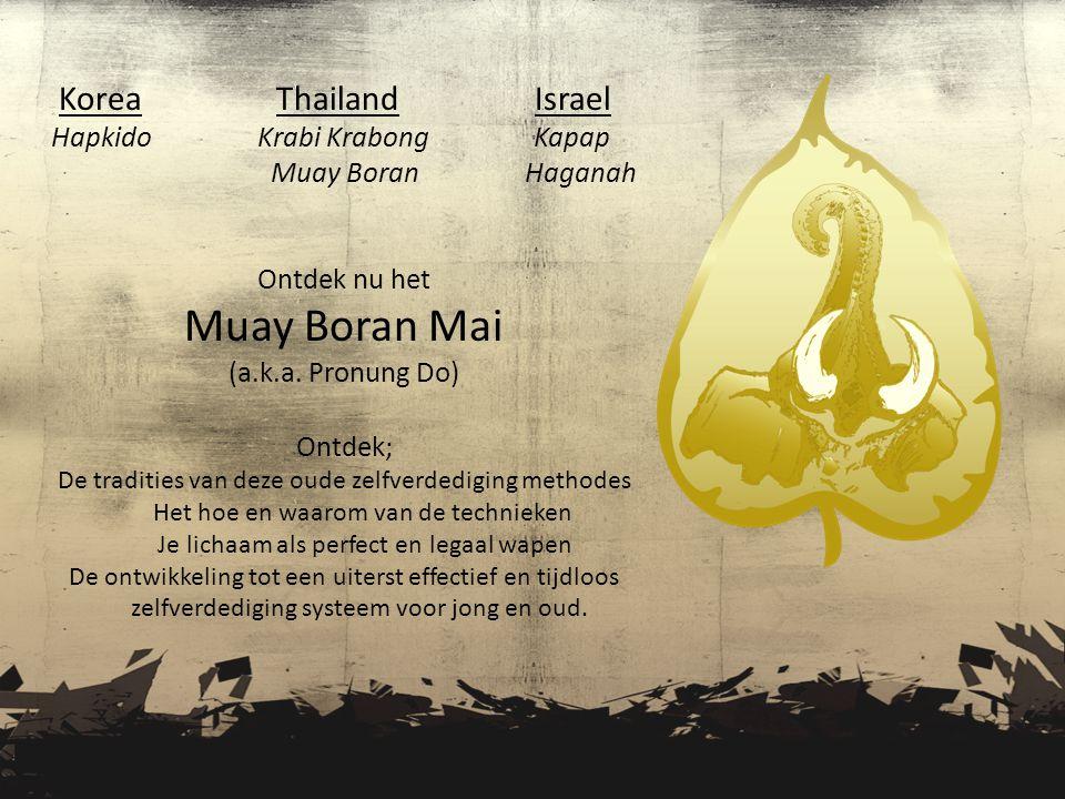 Korea Thailand Israel Hapkido Krabi Krabong Kapap Muay Boran Haganah Ontdek nu het Muay Boran Mai (a.k.a.
