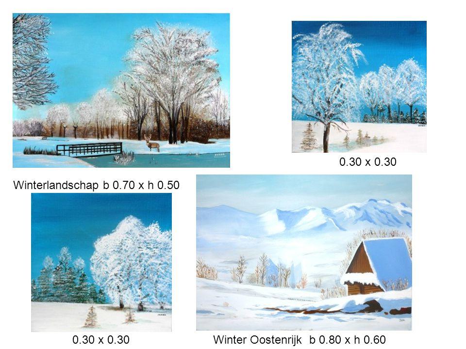 Winterlandschap b 0.70 x h 0.50 Winter Oostenrijk b 0.80 x h 0.60 0.30 x 0.30