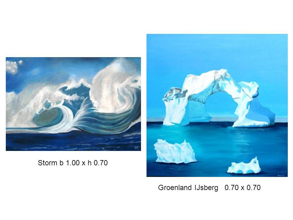 Groenland IJsberg 0.70 x 0.70 Storm b 1.00 x h 0.70