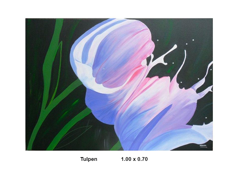 Tulpen 1.00 x 0.70