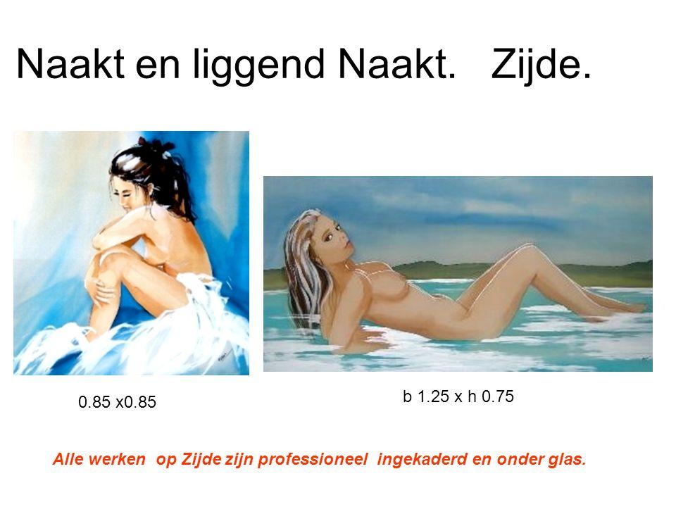 Naakt en liggend Naakt. Zijde. 0.85 x0.85 b 1.25 x h 0.75 Alle werken op Zijde zijn professioneel ingekaderd en onder glas.