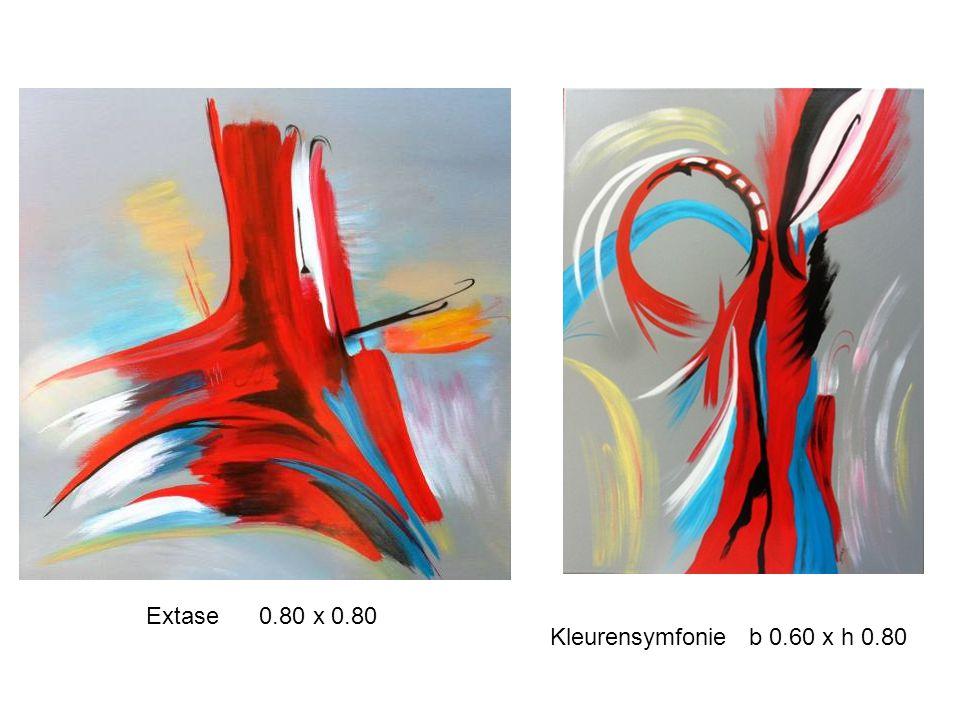 Extase 0.80 x 0.80 Kleurensymfonie b 0.60 x h 0.80
