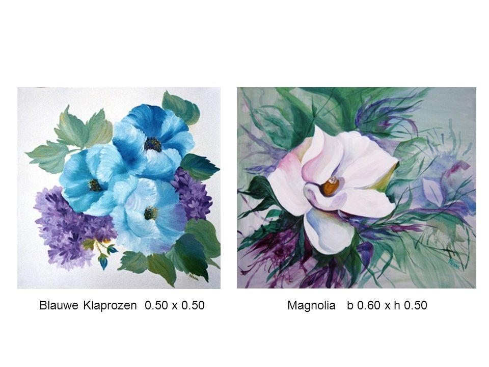 Blauwe Klaprozen 0.50 x 0.50 Magnolia b 0.60 x h 0.50