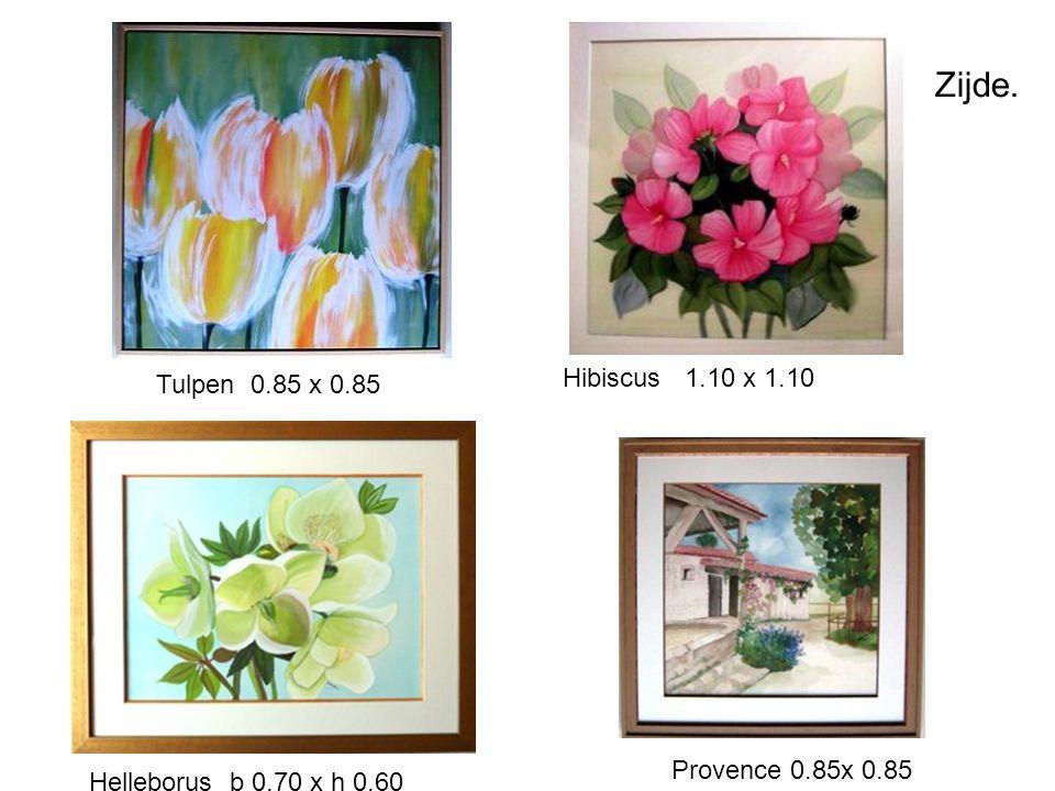 Zijde. Tulpen 0.85 x 0.85 Hibiscus 1.10 x 1.10 Helleborus b 0.70 x h 0.60 Provence 0.85x 0.85