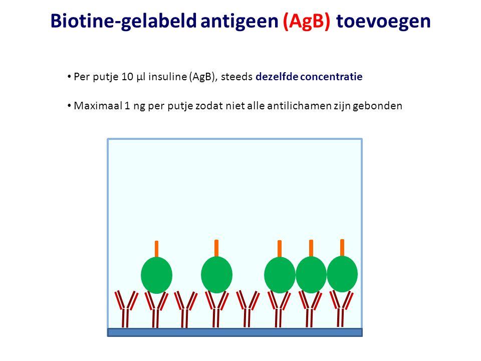 Biotine-gelabeld antigeen (AgB) toevoegen • Per putje 10 µl insuline (AgB), steeds dezelfde concentratie • Maximaal 1 ng per putje zodat niet alle ant