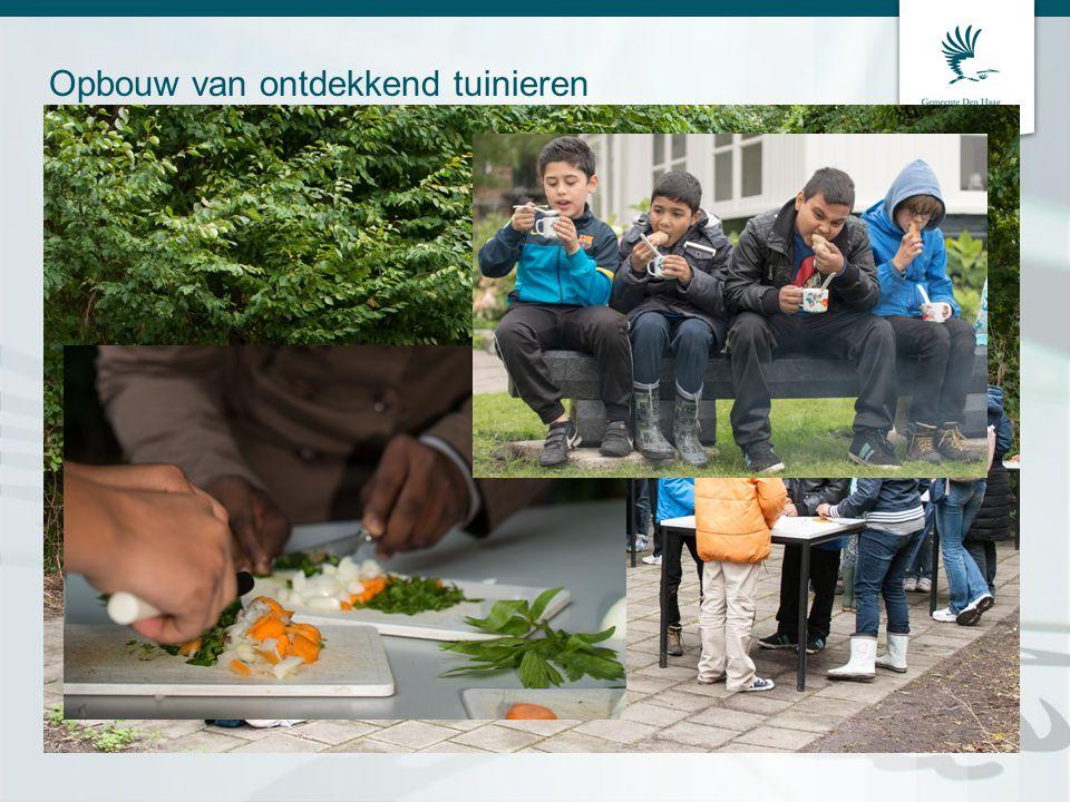 Opbouw van ontdekkend tuinieren •Les 1 op school Wat gaan we doen.
