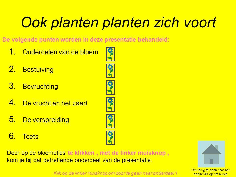Ook planten planten zich voort 1. Onderdelen van de bloem 4. De vrucht en het zaad 2. Bestuiving 3. Bevruchting 5. De verspreiding De volgende punten