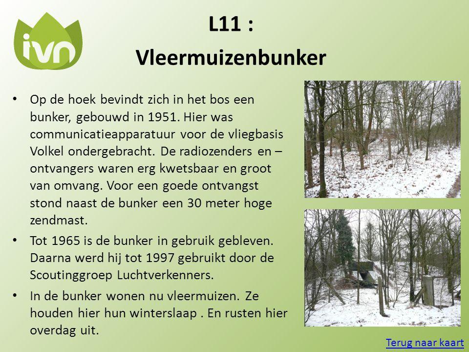 L11 : Vleermuizenbunker • Op de hoek bevindt zich in het bos een bunker, gebouwd in 1951. Hier was communicatieapparatuur voor de vliegbasis Volkel on