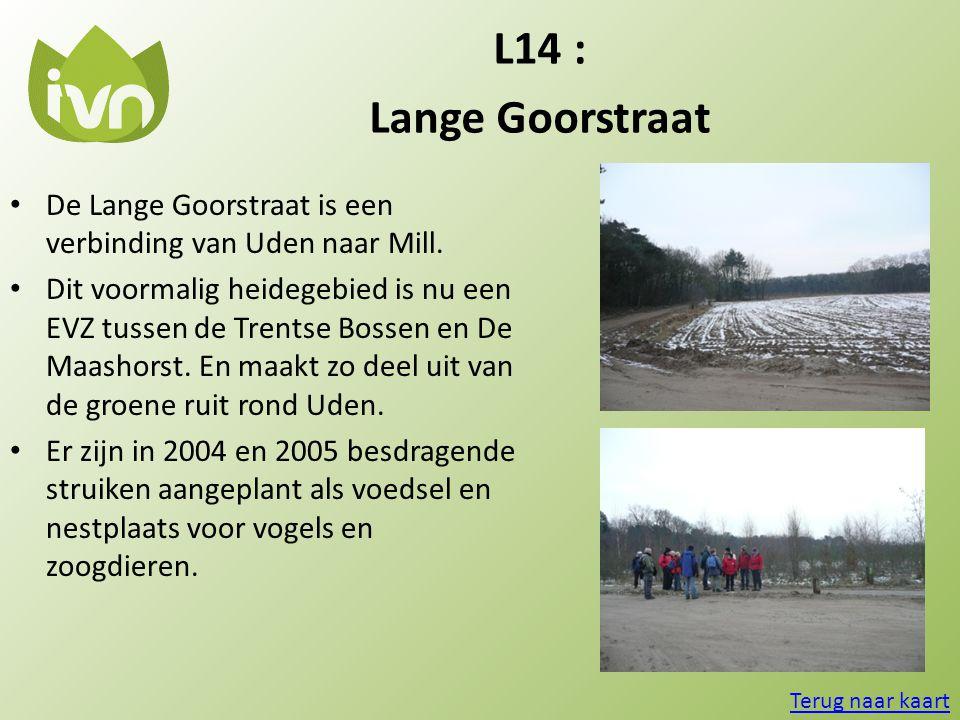 L14 : Lange Goorstraat • De Lange Goorstraat is een verbinding van Uden naar Mill. • Dit voormalig heidegebied is nu een EVZ tussen de Trentse Bossen