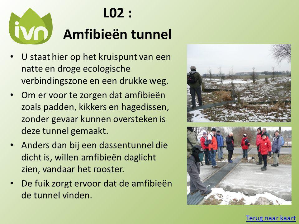 L02 : Amfibieën tunnel • U staat hier op het kruispunt van een natte en droge ecologische verbindingszone en een drukke weg. • Om er voor te zorgen da