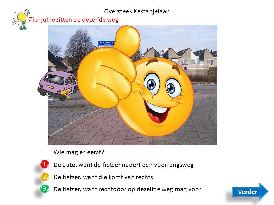 Oversteek Kastanjelaan Wie mag er eerst? De auto, want de fietser nadert een voorrangsweg De fietser, want die komt van rechts De fietser, want rechtd