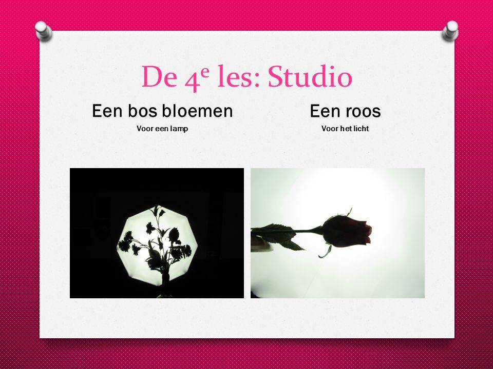 De 4 e les: Studio Een bos bloemen Voor een lamp Een roos Voor het licht