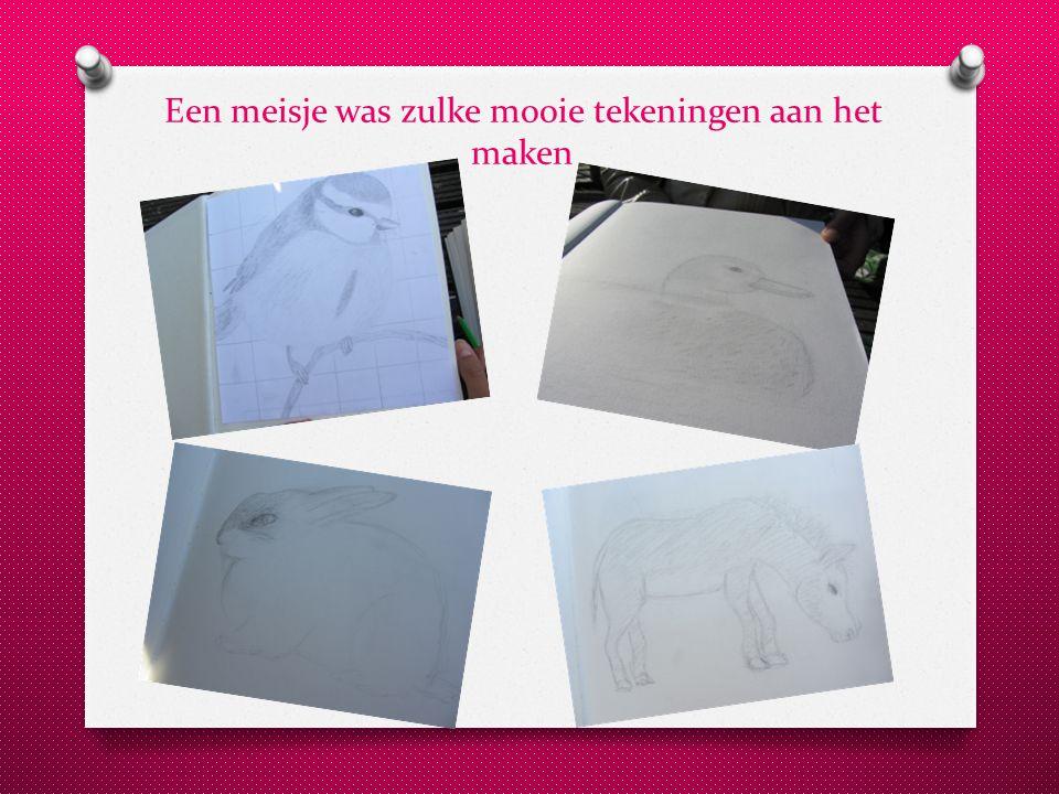 Een meisje was zulke mooie tekeningen aan het maken