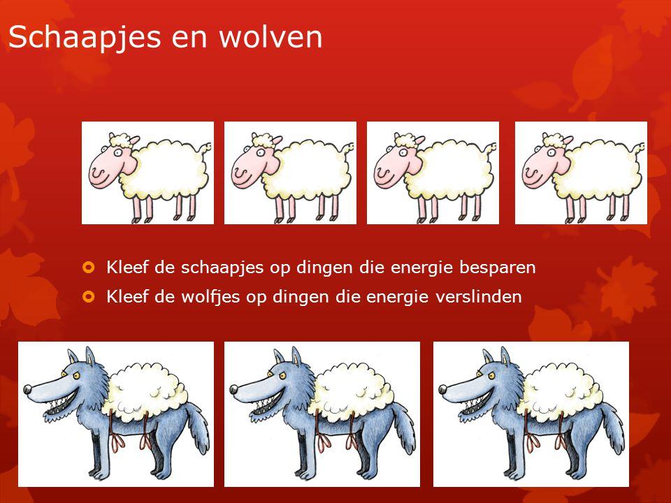 Schaapjes en wolven  Kleef de schaapjes op dingen die energie besparen  Kleef de wolfjes op dingen die energie verslinden