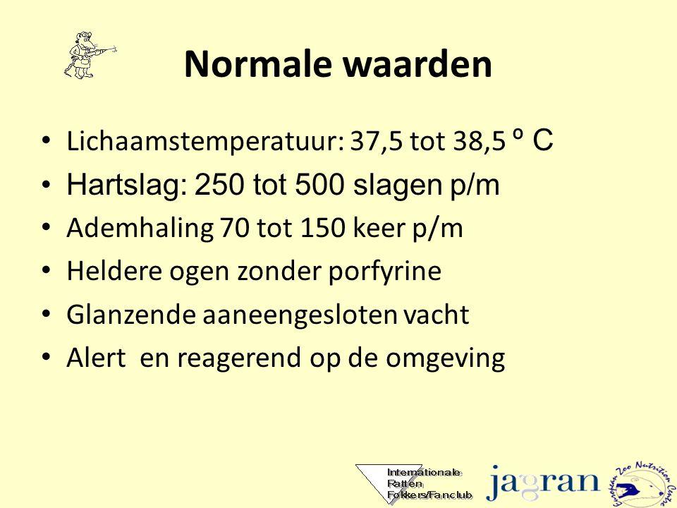Normale waarden • Lichaamstemperatuur: 37,5 tot 38,5 º C •Hartslag: 250 tot 500 slagen p/m • Ademhaling 70 tot 150 keer p/m • Heldere ogen zonder porf