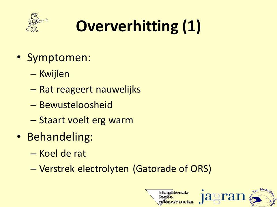 Oververhitting (1) • Symptomen: – Kwijlen – Rat reageert nauwelijks – Bewusteloosheid – Staart voelt erg warm • Behandeling: – Koel de rat – Verstrek